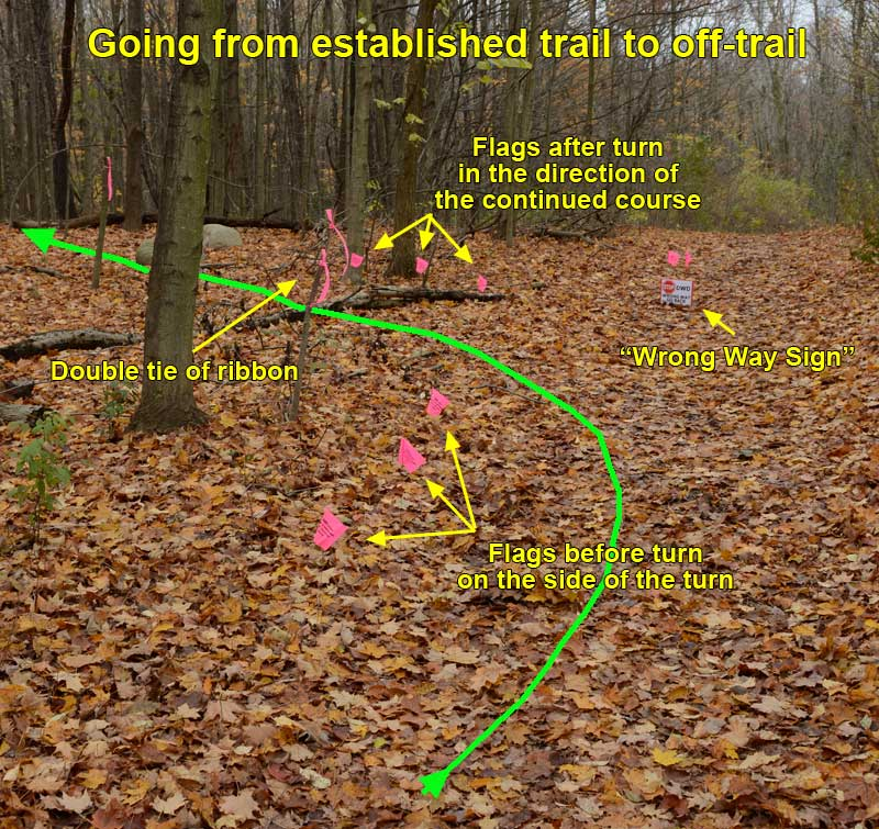EstablishedTrailToOffTrail